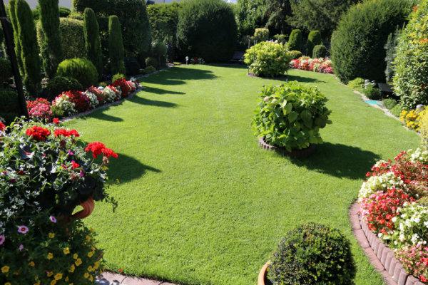 Simplifiez-vous la vie : optez pour un contrat d'entretien annuel de votre jardin