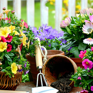 Jardinage pratique